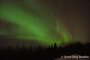 Hand Warmers, Gloves, and a chance to see the Aurora Borealis in Fairbanks