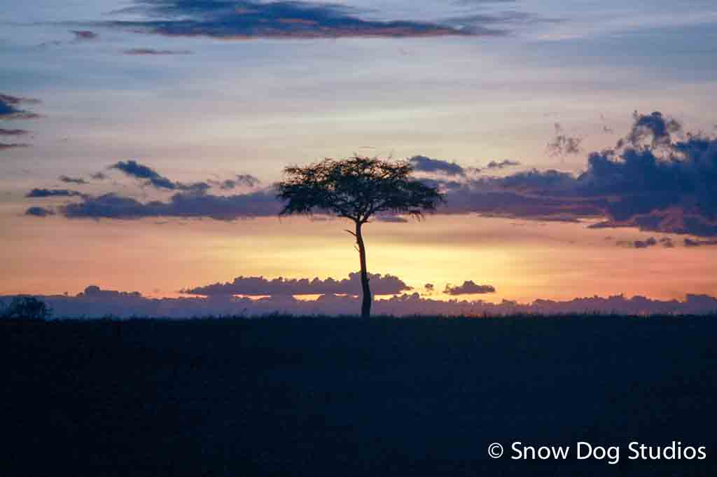 Sunset on the Mara, Masai Mara National Reserve, Kenya