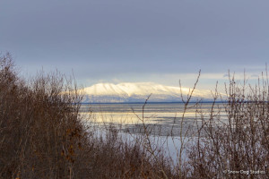 View across the Knik Arm