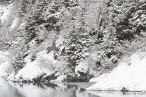 Portage Creek in Winter