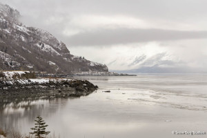 Turnagain Arm in Winter