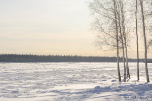 Tanana River, Fairbanks, AK, in Winter
