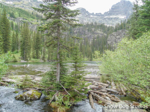 Glacier Park Day Hikes:  Snyder Lake
