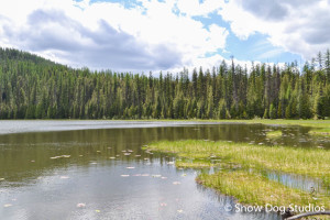 Glacier Park Day Hikes:  Fish Lake