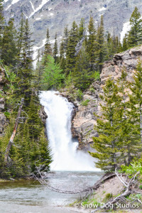 Running Eagle Falls:  Glacier Day Hikes