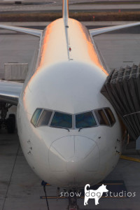 Airline jet at the gate